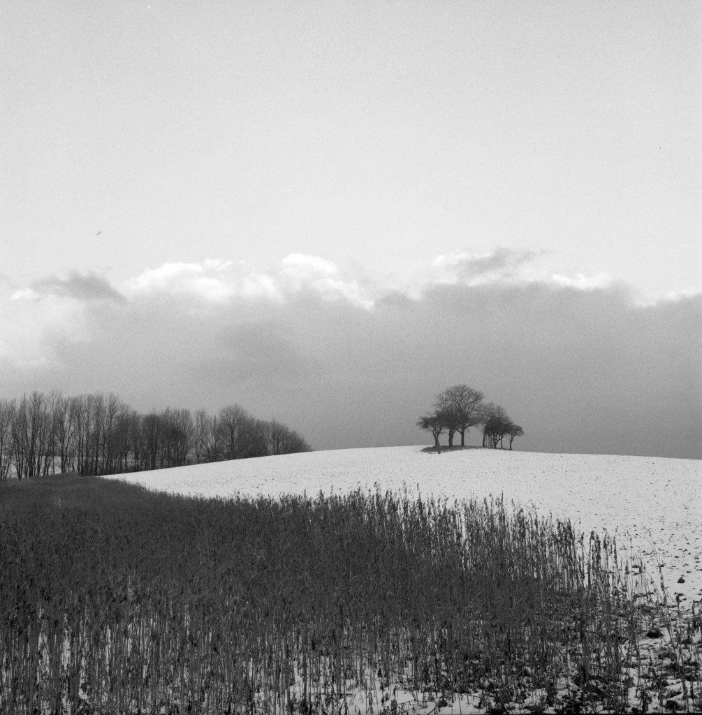 Offene Landschaften